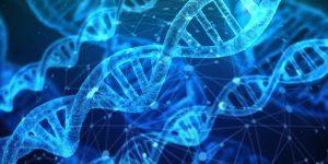 Cancer in DNA or Diet