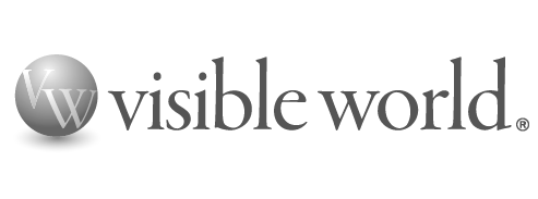 visible-world-grey
