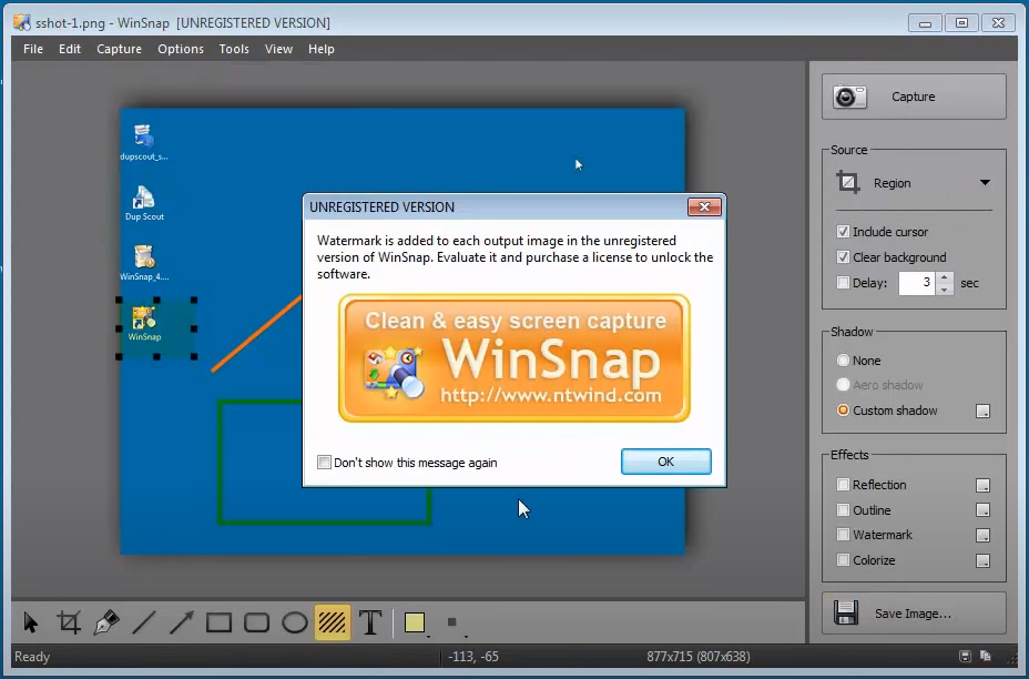 WinSnap 5