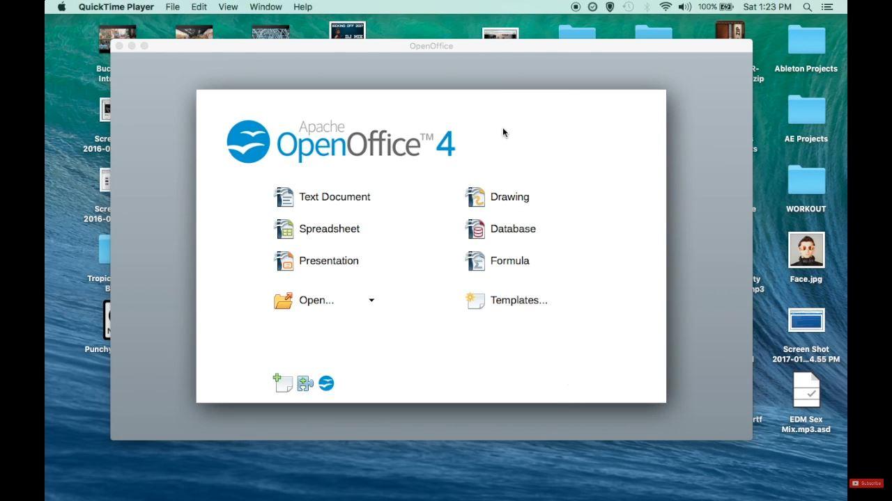 Apache OpenOffice Calc 4
